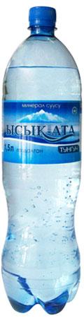 Купить Минеральная вода «Ысык-Ата Тунгуч»