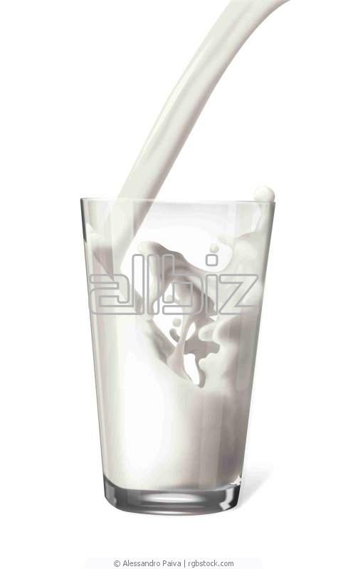 Купить Продукция молочная