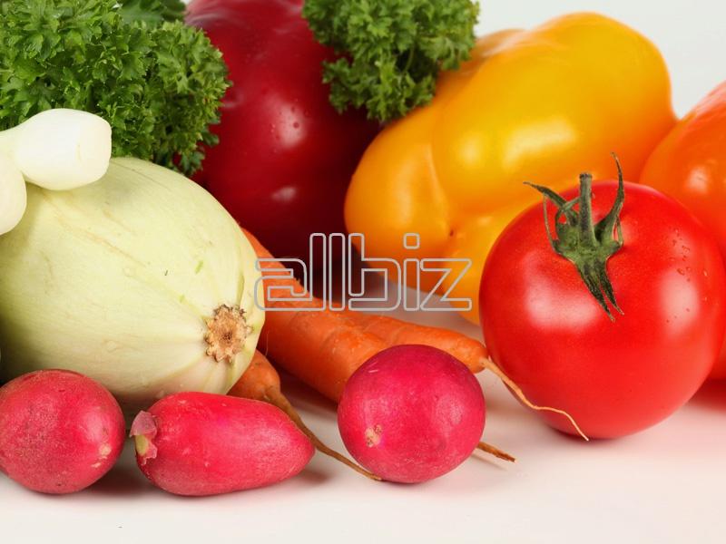 Купить Овощ свежий в ассортименте