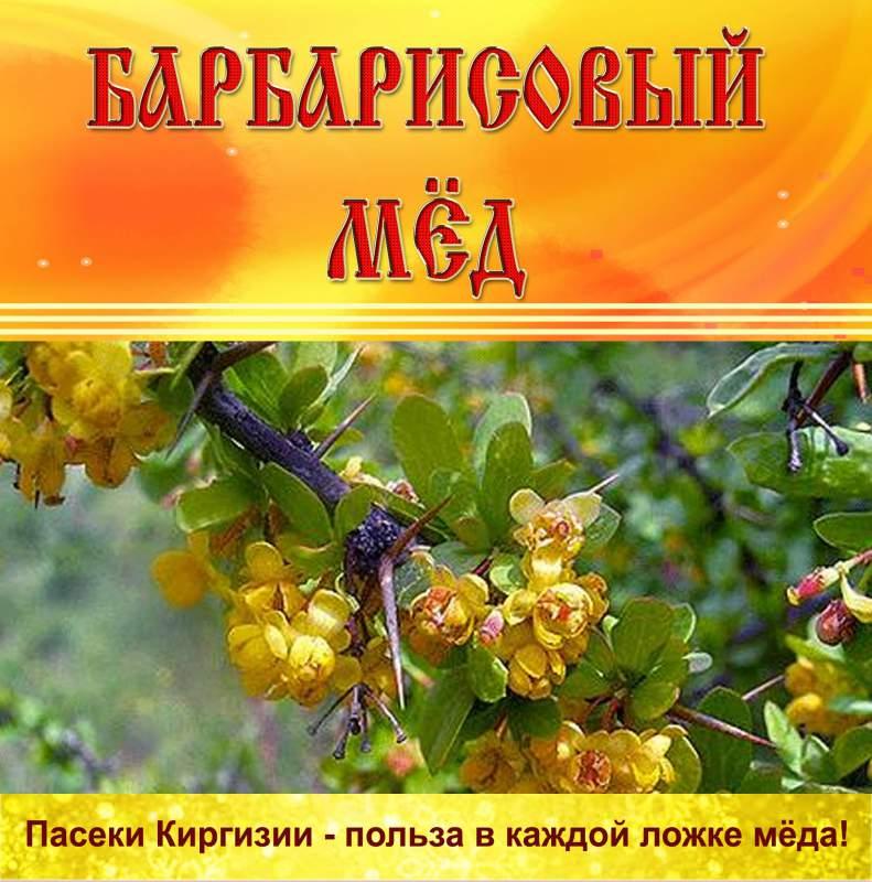 Купить Мёд горный Барбарисовый