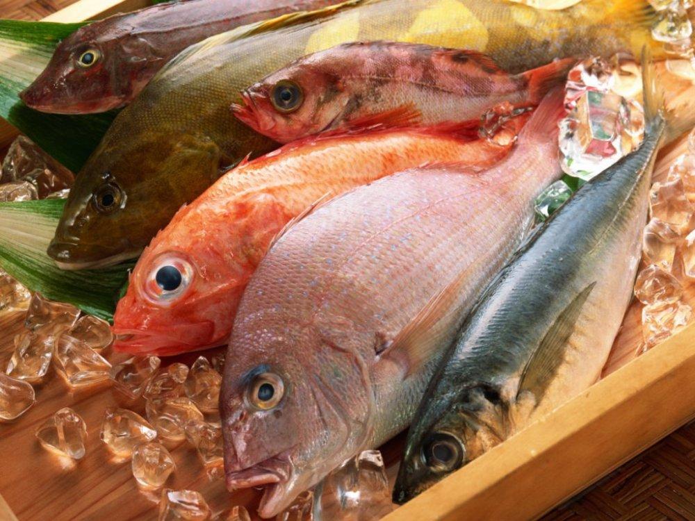 Купить Рыбная продукция