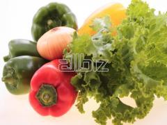 Овощ  свежий в ассортименте