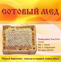 Мёд горный Эремурусовый