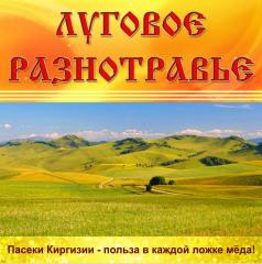 Steppe grasses Honey