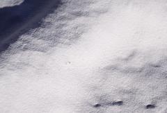 Известняк молотый (крупа, мука)
