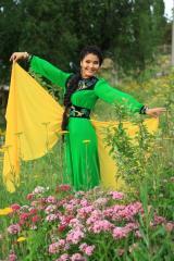 Платье - одежда для женщин