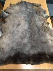 Крашеный полуфабрикат - полугрубошёрстная овчина
