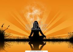 Курсы Хатха Йога