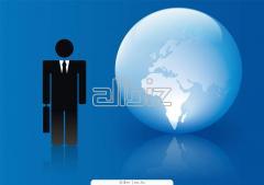 Слияния и поглощения, структурирование и реорганизация бизнеса