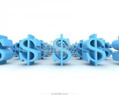 Экспертиза и оценка инвестиционных проектов