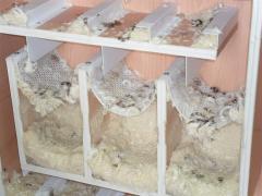 Сухая чистка пухоперьевых подушек, одеял, перин